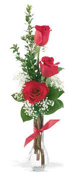 Sinop çiçek servisi , çiçekçi adresleri  mika yada cam vazoda 3 adet kirmizi gül