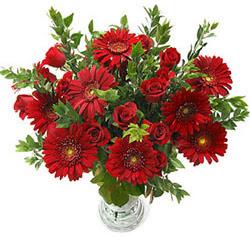 5 adet kirmizi gül 5 adet gerbera aranjmani  Sinop çiçek siparişi vermek