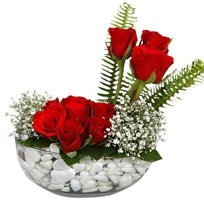cam içerisinde 9 adet kirmizi gül  Sinop anneler günü çiçek yolla