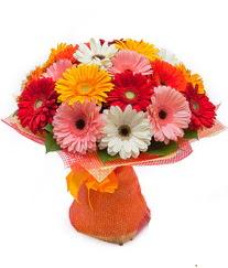 Renkli gerbera buketi  Sinop güvenli kaliteli hızlı çiçek