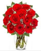 12 adet vazoda kıpkırmızı gül  Sinop çiçek online çiçek siparişi