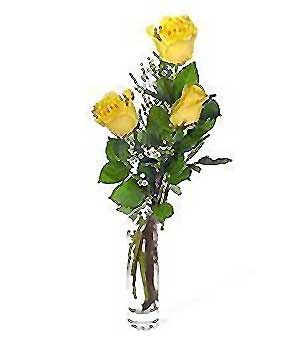 Sinop 14 şubat sevgililer günü çiçek  3 adet kalite cam yada mika vazo gül