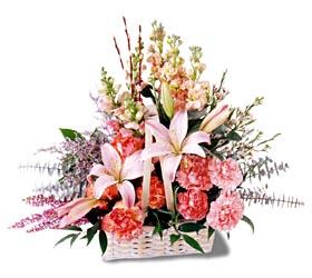 Sinop cicek , cicekci  mevsim çiçekleri sepeti özel tanzim