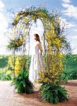 Sinop cicekciler , cicek siparisi  güller ve mevsim çiçegi