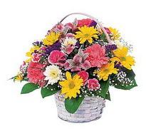 Sinop çiçekçiler  mevsim çiçekleri sepeti özel