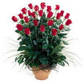 Sinop çiçek mağazası , çiçekçi adresleri  10 adet kirmizi gül cam yada mika vazo