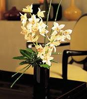 Sinop uluslararası çiçek gönderme  cam yada mika vazo içerisinde dal orkide