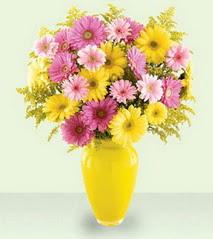 Sinop çiçek servisi , çiçekçi adresleri  cam yada mika vazoda kir çiçekleri özel