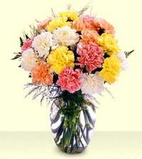 Sinop hediye sevgilime hediye çiçek  cam yada mika vazoda renkli karanfiller
