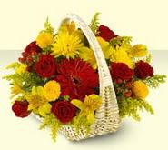 Sinop kaliteli taze ve ucuz çiçekler  sepette mevsim çiçekleri