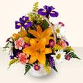 Sinop kaliteli taze ve ucuz çiçekler  sepet içinde karisik çiçekler