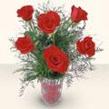Sinop çiçek servisi , çiçekçi adresleri  cam yada mika vazoda 6 adet kirmizi gül