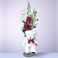 2 adet gül ve panda özel  Sinop online çiçek gönderme sipariş