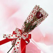 tek bir adet gül seffafta   Sinop online çiçek gönderme sipariş