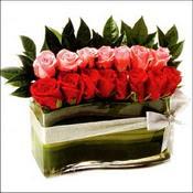 12 adet kirmizi gül ve cam   Sinop online çiçek gönderme sipariş