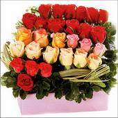 15 adet renkli gül ve cam   Sinop online çiçek gönderme sipariş