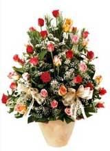 91 adet renkli gül aranjman   Sinop ucuz çiçek gönder