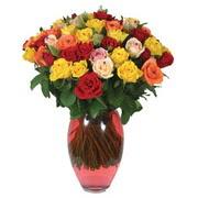 51 adet gül ve kaliteli vazo   Sinop ucuz çiçek gönder