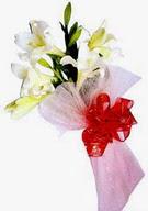 Sinop çiçekçiler  ince vazoda gerbera ve ayi