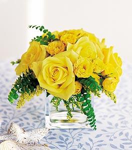 Sinop çiçek servisi , çiçekçi adresleri  cam içerisinde 12 adet sari gül
