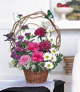 Sinop çiçek servisi , çiçekçi adresleri  sepet içerisinde karanfil gerbera ve kir çiçekleri