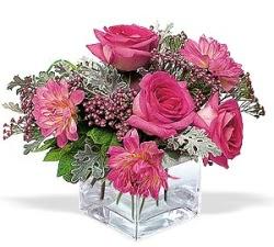 Sinop çiçek servisi , çiçekçi adresleri  cam içerisinde 5 gül 7 gerbera çiçegi