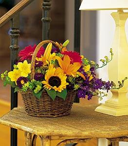 Sinop çiçek servisi , çiçekçi adresleri  karisik sepet içinde mevsimsel çiçekler