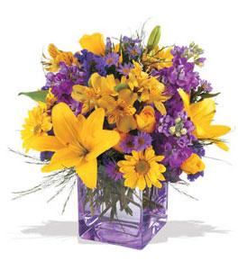 Sinop İnternetten çiçek siparişi  cam içerisinde kir çiçekleri demeti