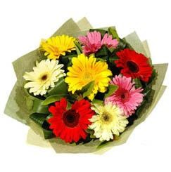 9 adet karisik gerbera demeti  Sinop İnternetten çiçek siparişi