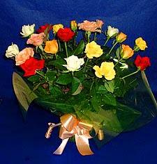 Sinop çiçek siparişi vermek  13 adet karisik renkli güller