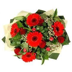 Sinop internetten çiçek siparişi   5 adet kirmizi gül 5 adet gerbera demeti