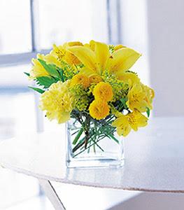 Sinop internetten çiçek siparişi  sarinin sihri cam içinde görsel sade çiçekler