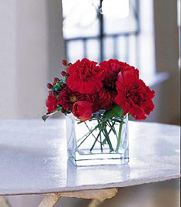 Sinop internetten çiçek siparişi  kirmizinin sihri cam içinde görsel sade çiçekler