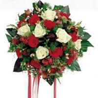 Sinop internetten çiçek siparişi  6 adet kirmizi 6 adet beyaz ve kir çiçekleri buket