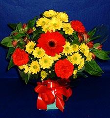 Sinop internetten çiçek siparişi  sade hos orta boy karisik demet çiçek
