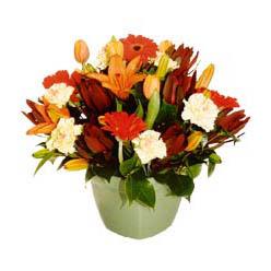mevsim çiçeklerinden karma aranjman  Sinop çiçek satışı