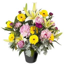 karisik mevsim çiçeklerinden vazo tanzimi  Sinop çiçek mağazası , çiçekçi adresleri