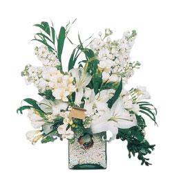 Sinop 14 şubat sevgililer günü çiçek  sadece beyazlardan olusmus mevsim cam yada mika tanzim
