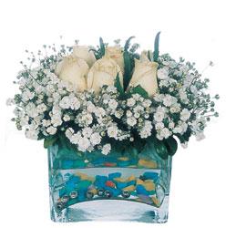 Sinop online çiçek gönderme sipariş  mika yada cam içerisinde 7 adet beyaz gül
