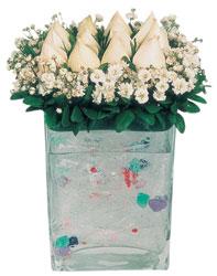 Sinop online çiçek gönderme sipariş  7 adet beyaz gül cam yada mika vazo tanzim