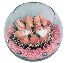 Sinop cicekciler , cicek siparisi  cam fanus içerisinde 10 adet gül