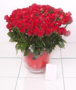 Sinop çiçek online çiçek siparişi  101 adet kirmizi gül