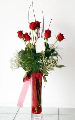 Sinop çiçek servisi , çiçekçi adresleri  6 adet kirmizi gül ve cam yada mika vazo