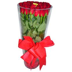 Sinop online çiçekçi , çiçek siparişi  12 adet kirmizi gül cam yada mika vazo tanzim