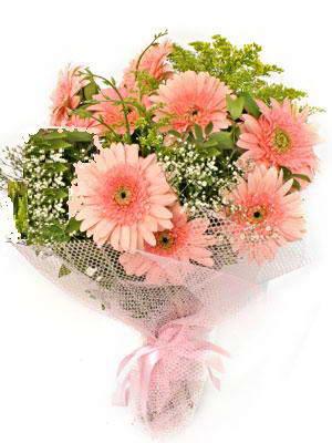 Sinop internetten çiçek satışı  11 adet gerbera çiçegi buketi