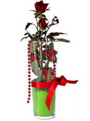 Sinop hediye sevgilime hediye çiçek  Cam yada mika içerisinde 9 adet kirmizi gül - sevdiklerinize özel