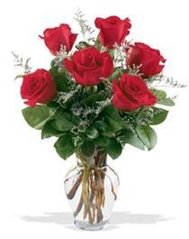 Sinop ucuz çiçek gönder  7 adet kirmizi gül cam yada mika vazoda sevenlere