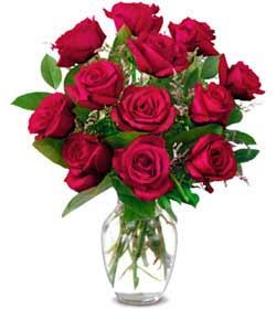Sinop hediye sevgilime hediye çiçek  1 düzine kirmizi gül sevenlere özel vazo gülleri