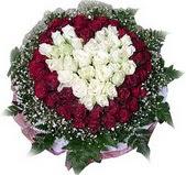 Sinop İnternetten çiçek siparişi  27 adet kirmizi ve beyaz gül sepet içinde