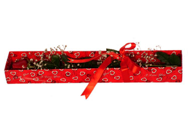 Sinop çiçek siparişi sitesi  kutu içerisinde 1 adet kirmizi gül